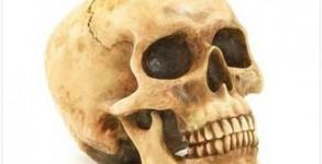 Grining Skull Halloween Gift 2012