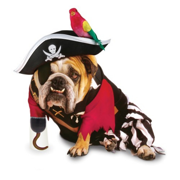 pirate dog halloween costume